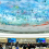 Human Rights Council appoints seven new Special Procedures Mandate-Holders