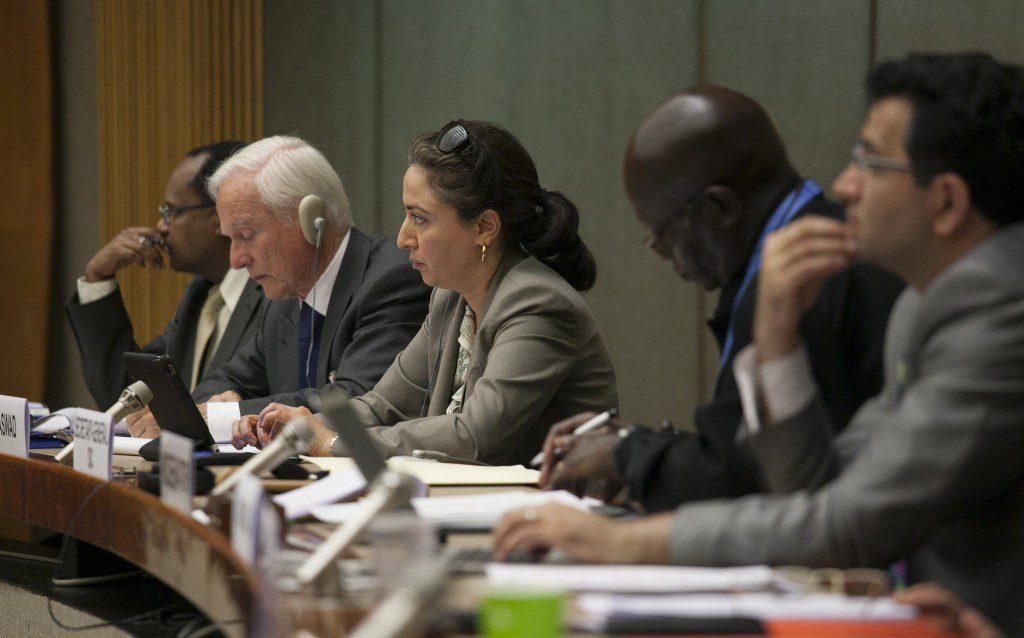 Third Istanbul Process Meeting, Geneva, June 2013
